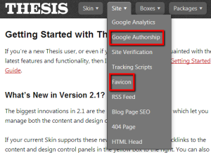 Add google authorship and favicon with Thesis