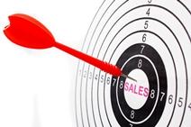 Niche Insurance Sales